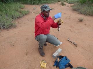 Alois Wambua (MSc student, Karatina University)